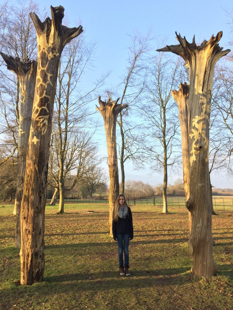 The Eldest standing amidst the beautiful tree sculpture