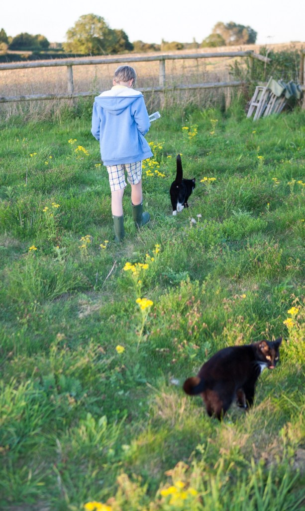 The Boy and two cats taking Max to the top of the field