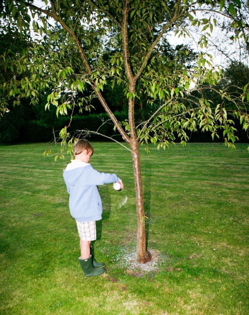 Max's tree